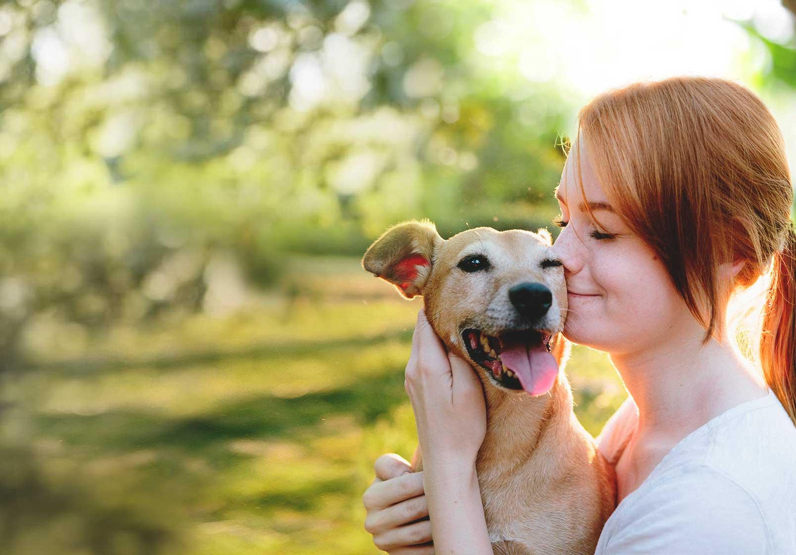 Pet Rabbit Insurance Comparison to Veterinary Bills
